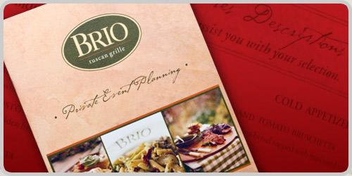 brio-brochure